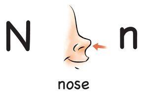 Карточка на английском nose