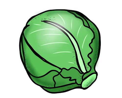 Капуста по-английски - cabbage [ˈkæbɪʤ]