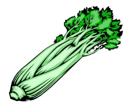 Сельдерей по-английски - celery [ˈselərɪ]