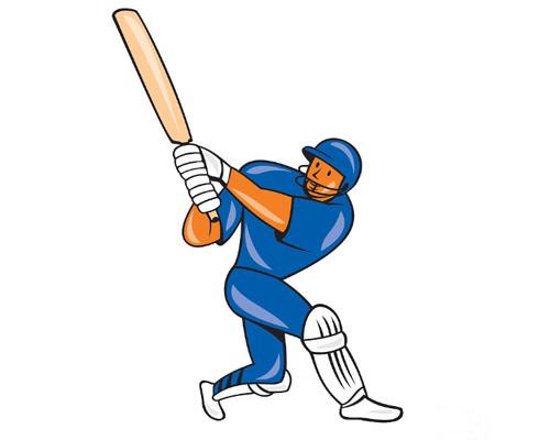 Играть в крикет по-английски будет - playing cricket