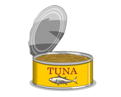 a tin of fish