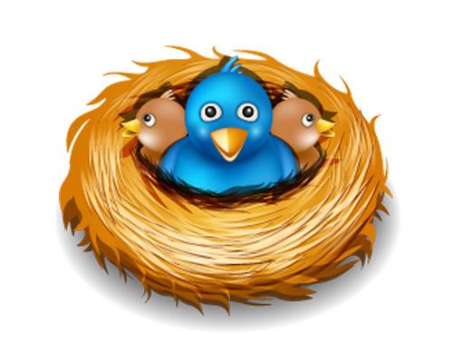 A bird lives in a nest